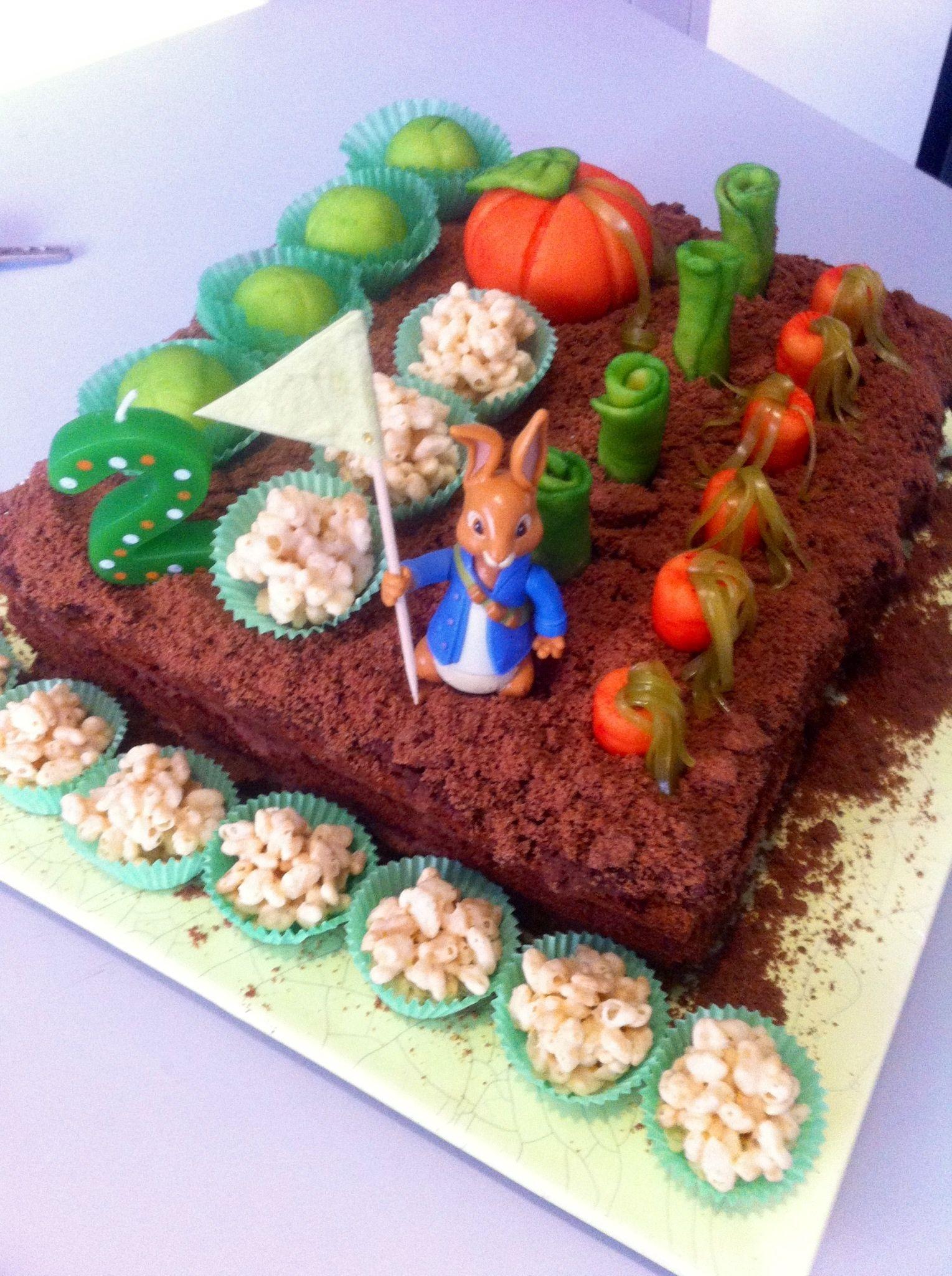 Peter Rabbit Mr McGregor's veg garden cake ...