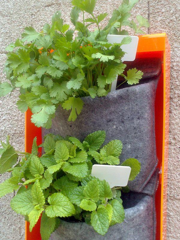 aromáticas para tu cocina o balcón con la jardinera VLux de Vertiflor. http://www.vertiflor.com/botiga/productos/
