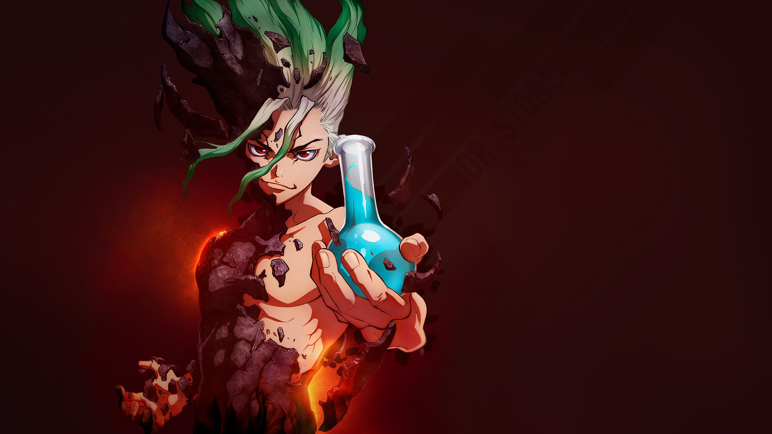 Dr. Stone anime flask 2K wallpaper hdwallpaper