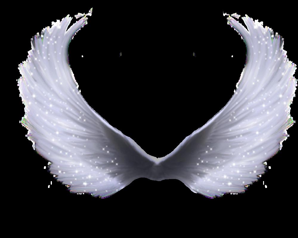 Pin By Osvaldo Best On Angel Wings Angel Wings Png Wings Png Wings