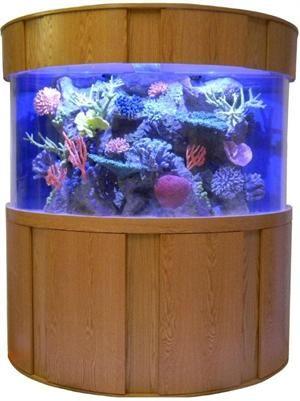 Tsunami 120 Gallon 48 Lx24 Wx30 H Half Cylinder Acrylic Aquarium Hc120 Fish Tanks Direct Fish Tank Acrylic Aquarium Aquarium