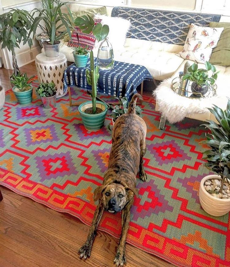 Totally Awesome Inexpensive Indoor Outdoor Rug Only 115 Perfect Bright Aztec