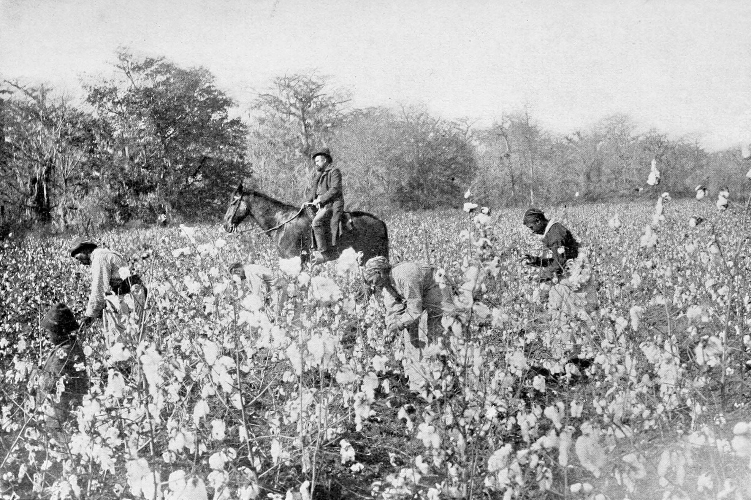 changes in farming post civil war The economic impact after the civil war was devastating for the south and the north, because the war was extremely costly for both sides it took decades for both sides to.