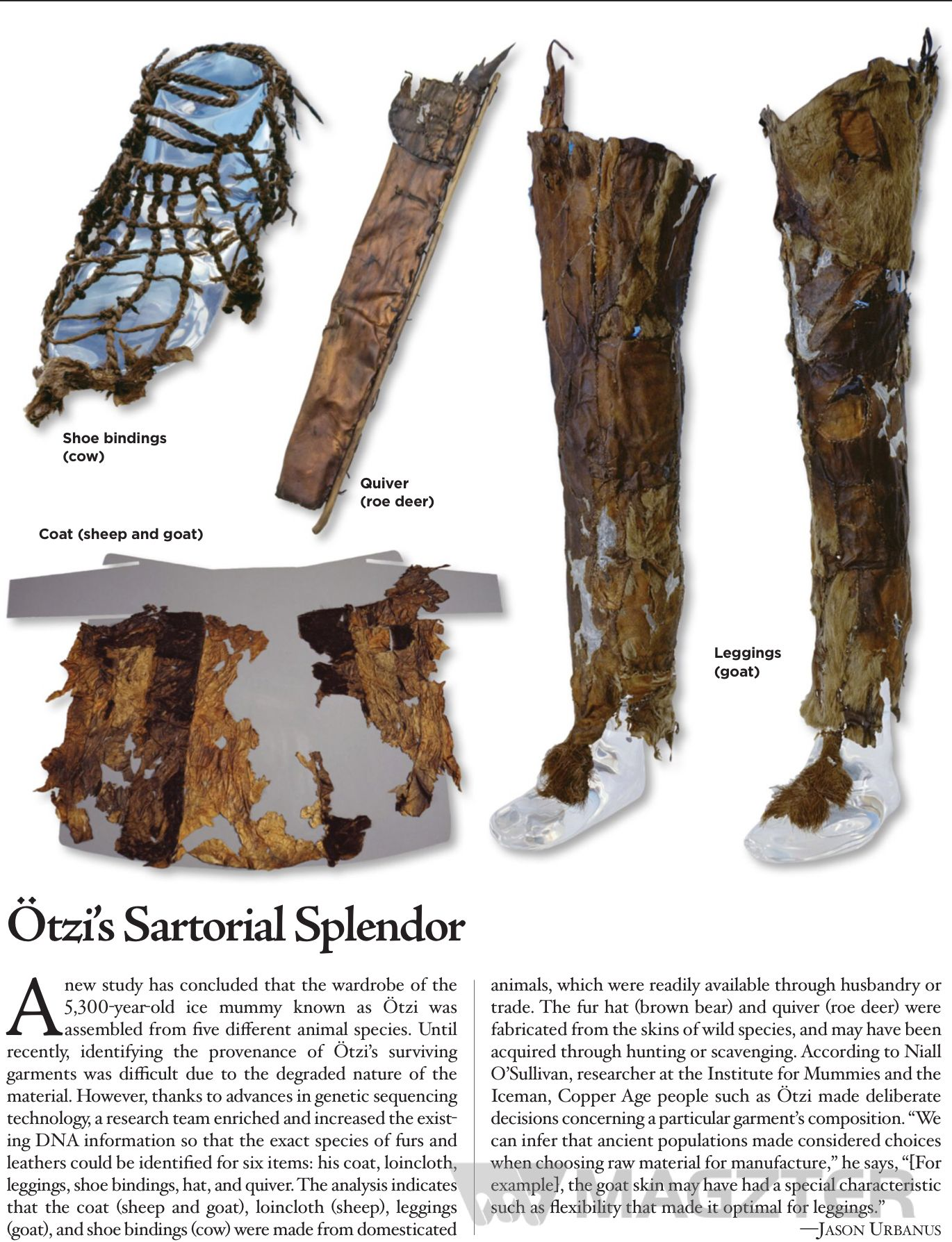 Read Archaeology On Magzter