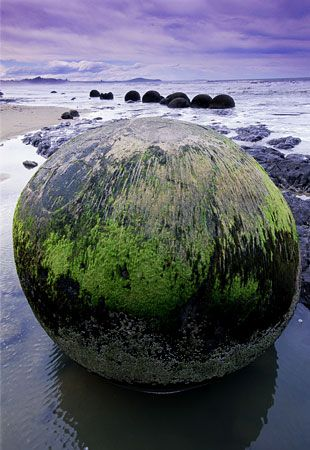 """The Moeraki Boulders are a big attraction, found on Koekohe Beach near Moeraki on New Zealand's coast. The huge, gray, spherical stones formed in sediment on the sea floor 60 million years ago and were revealed by shoreline erosion. The boulders, some of which stand alone and some in clusters, can weigh several tons and measure 10 feet across."""