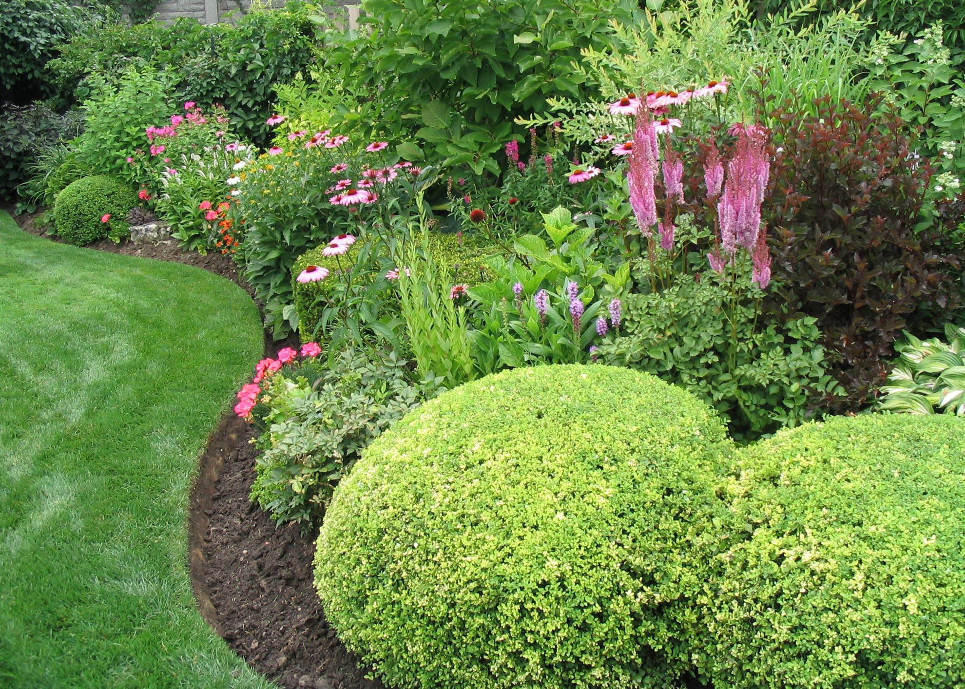Landscaping With Evergreen Shrubs : Landscape pictures ideas landscaping evergreen garden