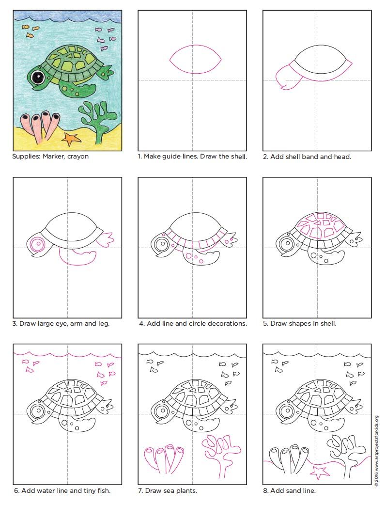 Draw a Cute Sea Turtle | Sea turtles and Turtle