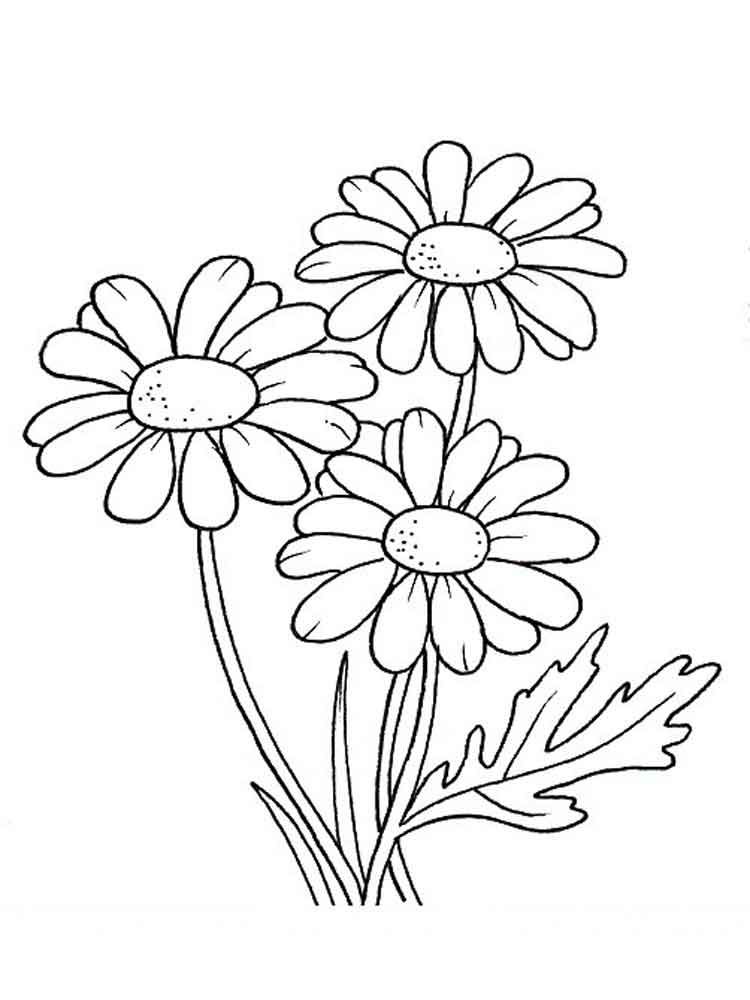 Daisy Coloring Pages Best Coloring Pages For Kids Flower Coloring Pages Flower Drawing Coloring Pages