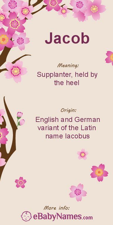 What does supplanter mean in a name