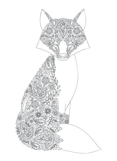 Fox Coloring Page By Sarah Wade Fox Coloring Page