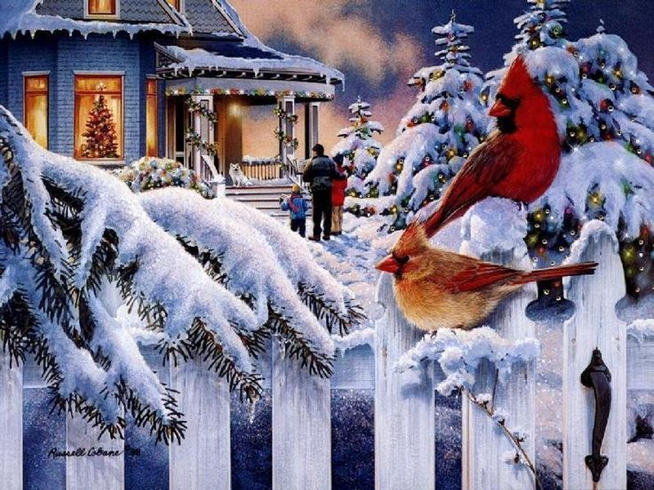 Christmas Bliss Christmas Scenery Beautiful Christmas Scenes Christmas Desktop Wallpaper