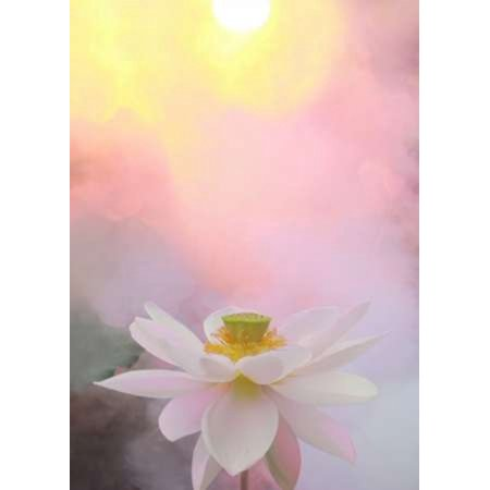 Beauty At Dawn Canvas Art Bahman Farzad 20 X 28 Products Images, Photos, Reviews