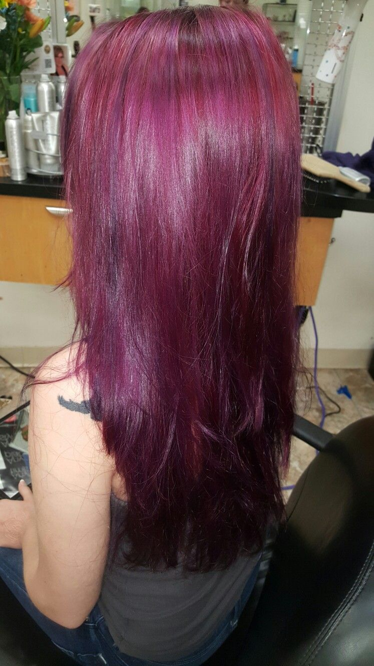 Purple And Bordeaux Paul Mitchell Color Pop Hot Hair By Audrey