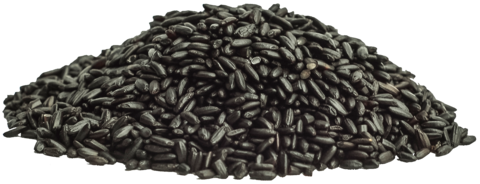 Black Rice Grains Close Up By Forbidden Foods