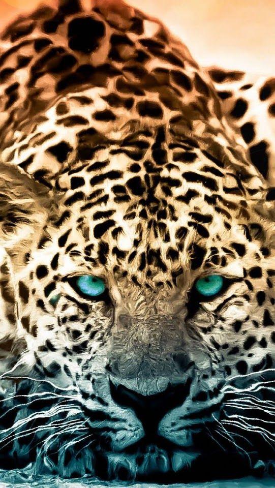 Leopard Green Eyes ♥g♥ Animal wallpaper, Jaguar