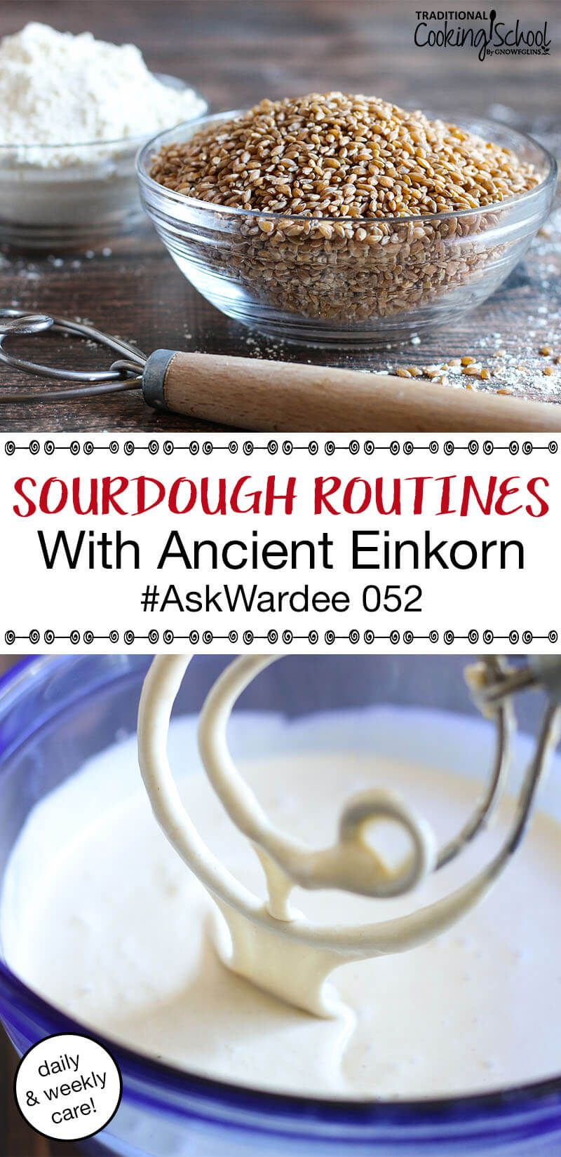 2 Sourdough Routines With Einkorn Daily & Weekly Care
