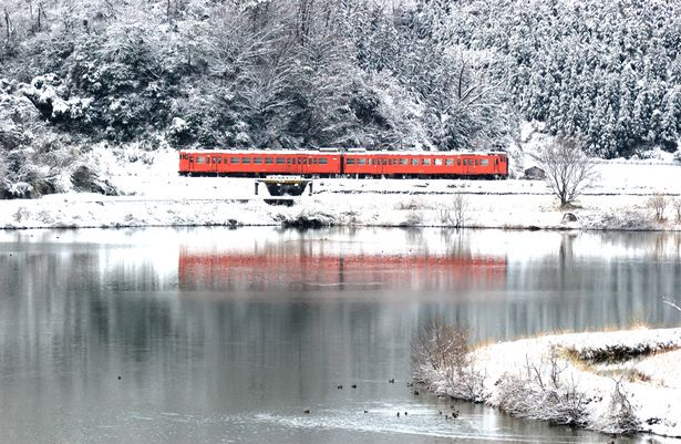 白銀のタラコ | 乗り物・交通 > 鉄道・駅の写真 | GANREF