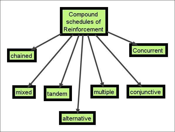 Compound Schedules Of Reinforcement Bcba Reinforcement Bcaba Exam
