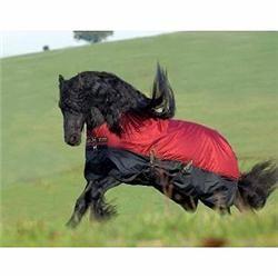 Amigo Mio Turnout Lite With Leg Arches Burgundy Black Horse Rugs Gjw M 45
