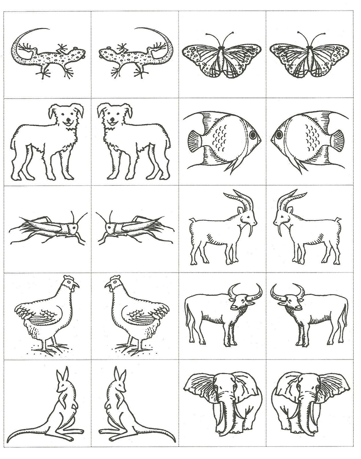 Noah\'s Ark Animals Coloring Pages | VBS | Pinterest | Preschool ...