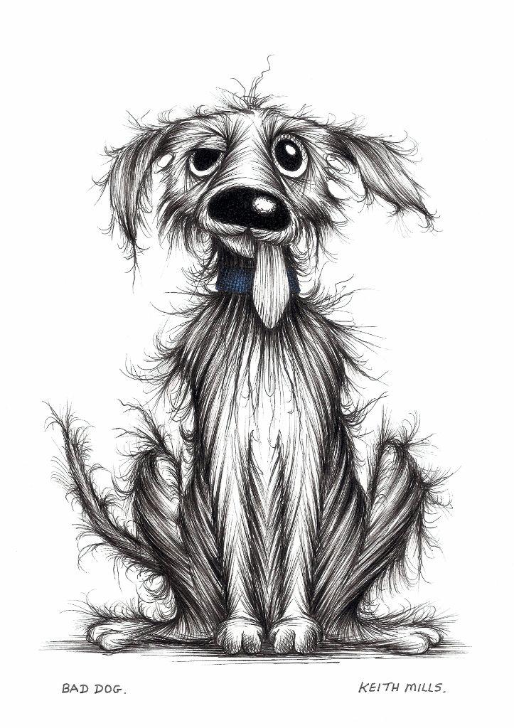 Bad dog by Keith Mills. Hond tekeningen, Honden trimsalons