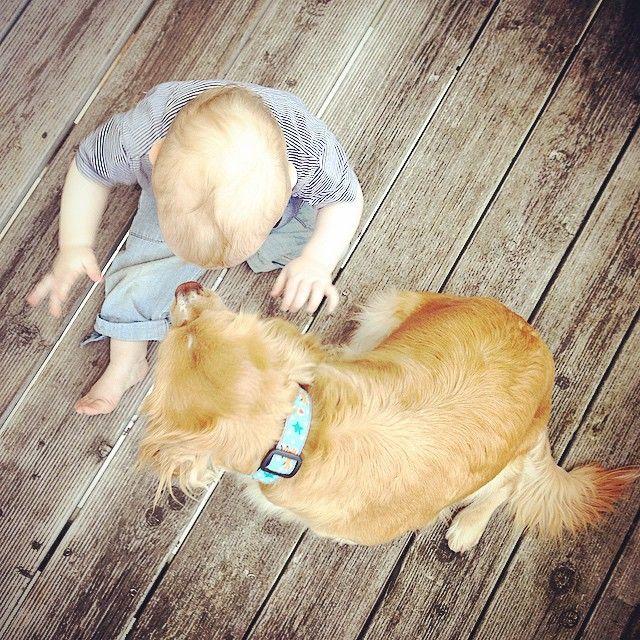 Zweisamkeit ❤️ #baby #dog #love #latergram