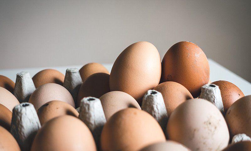 Ruyada Yumurta Gormek Ruyatabiri Videolu Ruya Tabirleri Yumurta