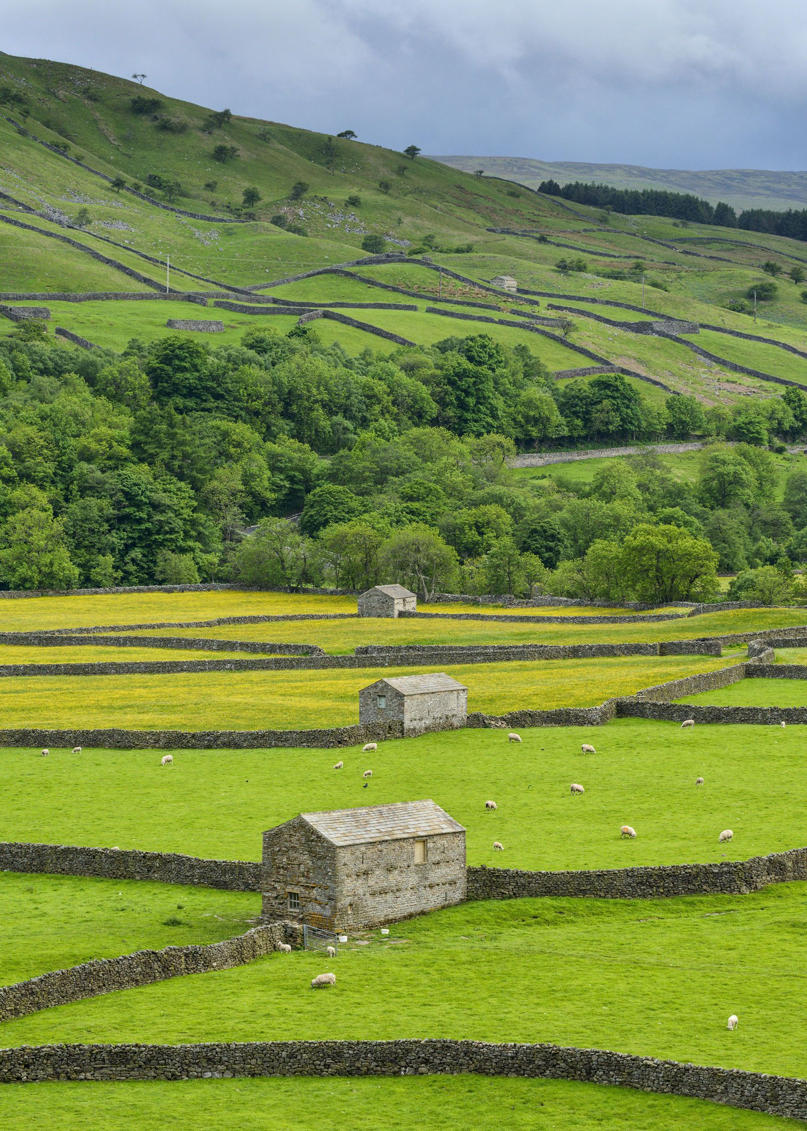 14 pictures of Yorkshire that are so beautiful it hurts | Old ...