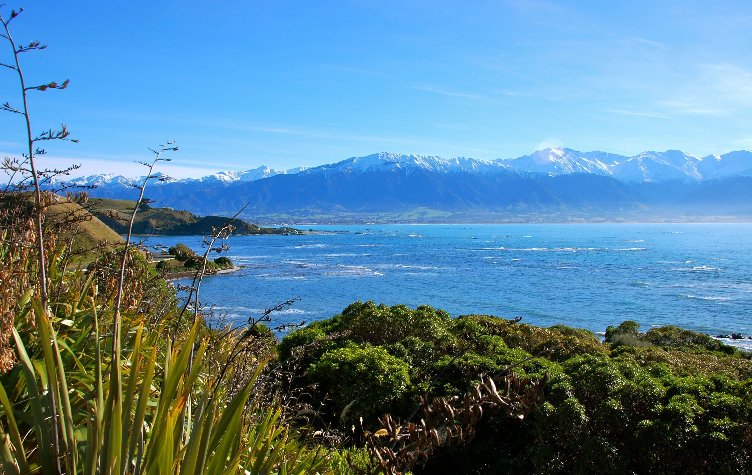 beautiful new zealand - Buscar con Google