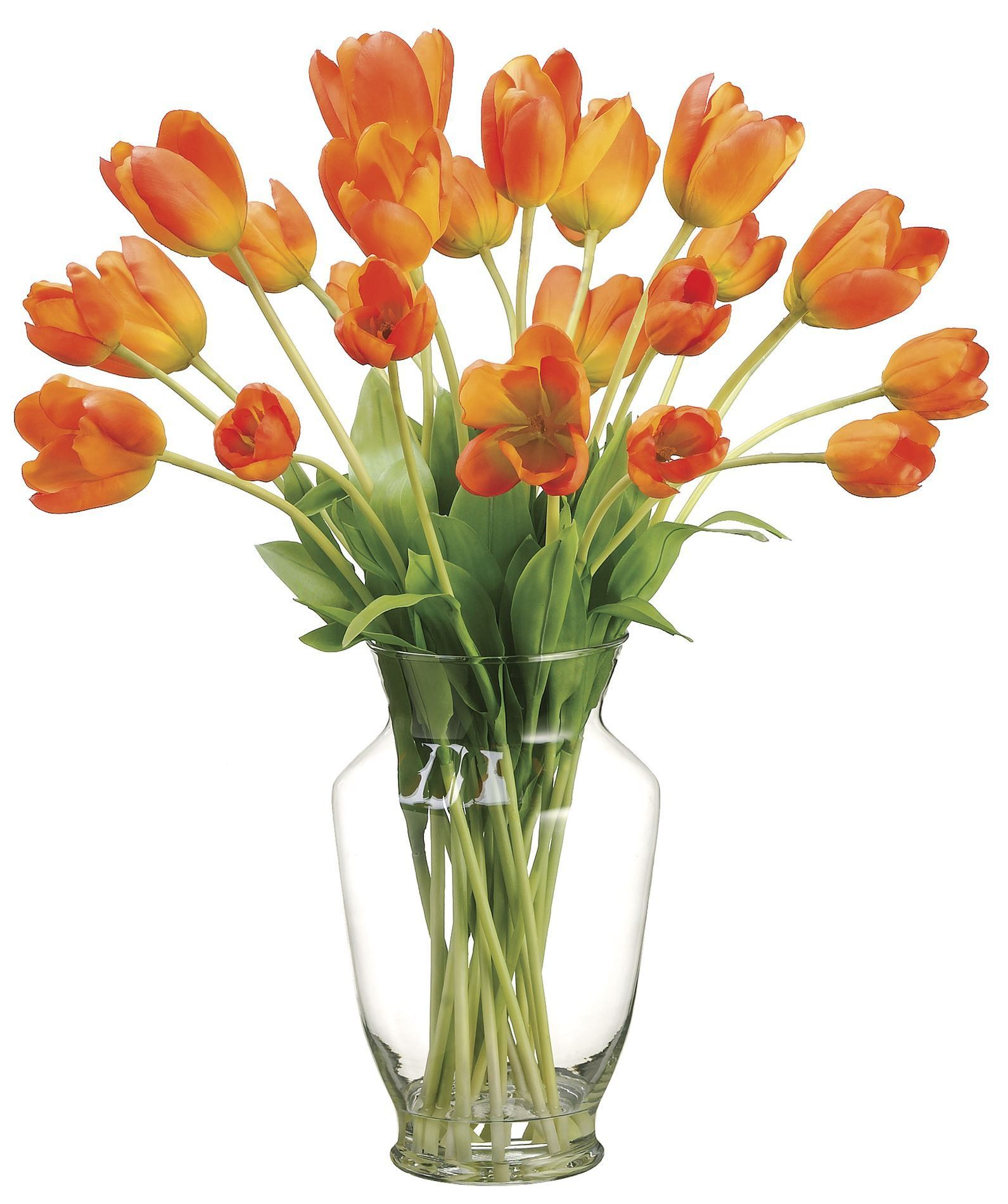 tulip reviews in decorative decor tulips jane floral seymour wayfair pillows vase arrangement botanicals arranged pdp