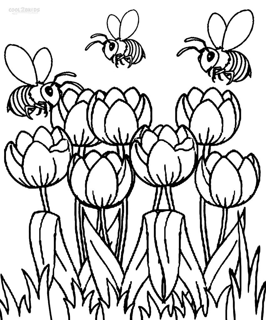 Tulip Coloring Pages Spring Coloring Pages Flower Coloring Pages