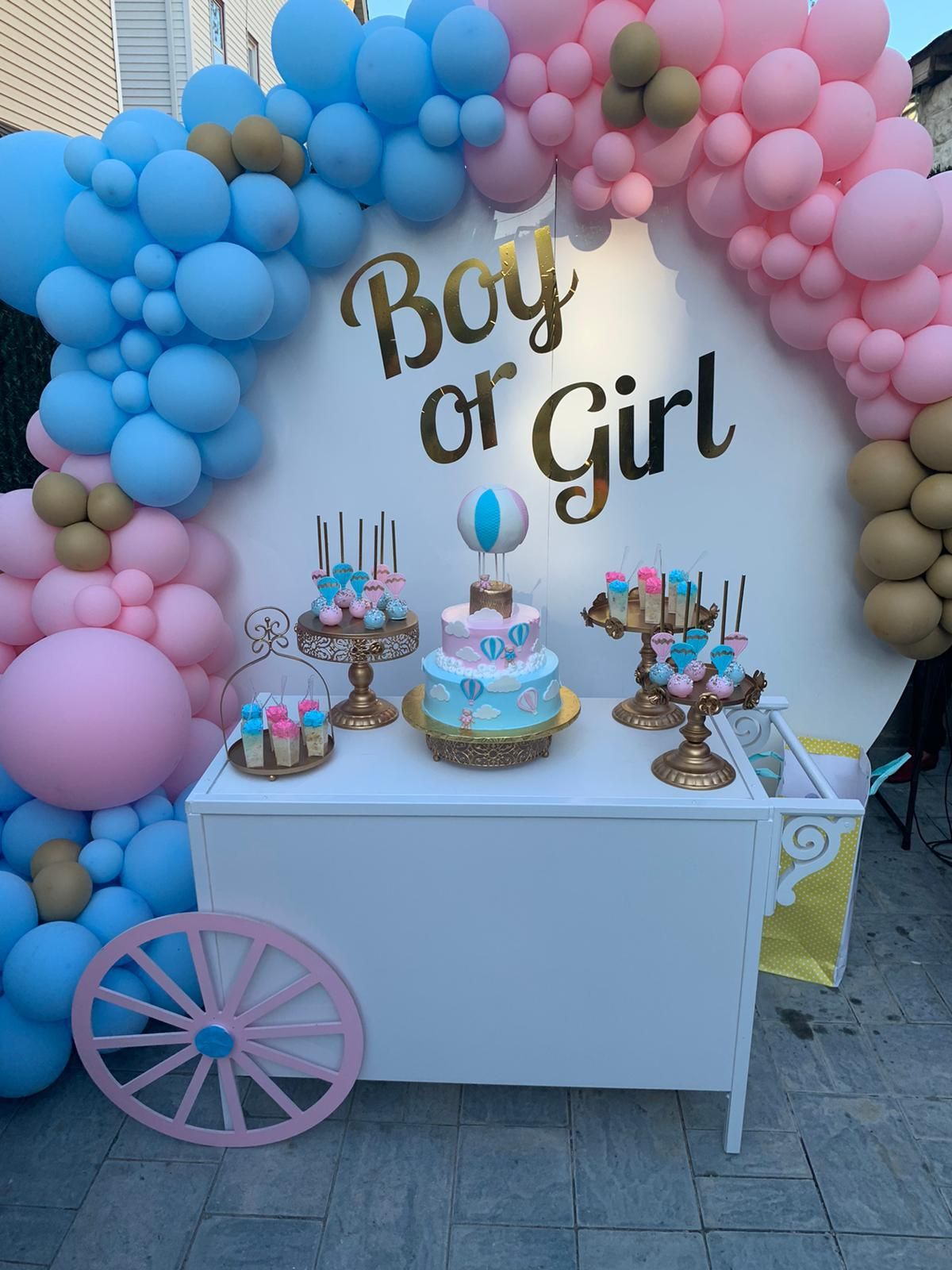 Gender Reveal Ideas Gender Reveal Decorations Gender Reveal Balloons Girl Gender Reveal