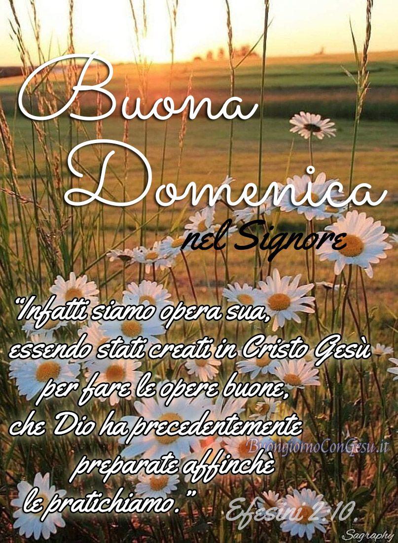 Buona Domenica A Tutti Immagini Cristiane Buona Domenica