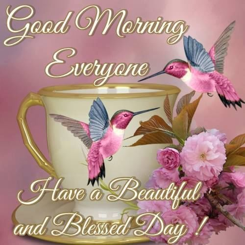 Good Morning Everyone Status : Good morning everyone have a blessed day pictures photos