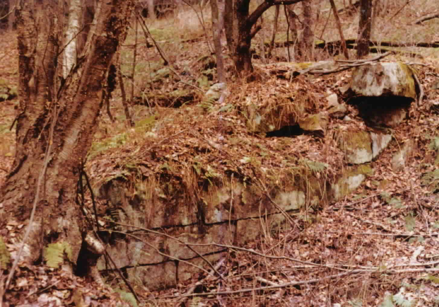 Licking Furnace, on Licking Creek in Farmington Twp., Clarion Co., PA (east of Lickingville) http://r2parks.net/Licking.html