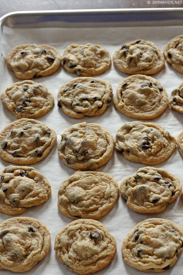 The Best Soft Chocolate Chip Pudding Cookies