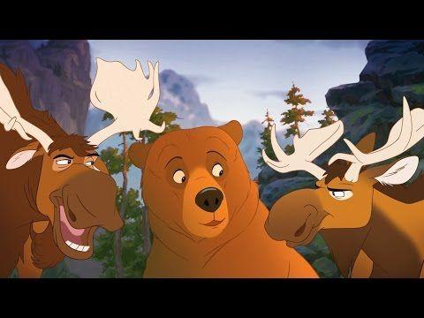 bärenbrüder 3