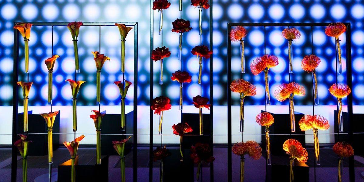 Flores y pipetas