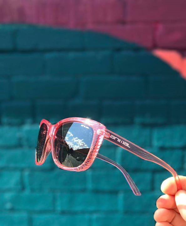 8c108605722d Product of the Day - Animal pop butterfly sunglasses in crystal rose ...