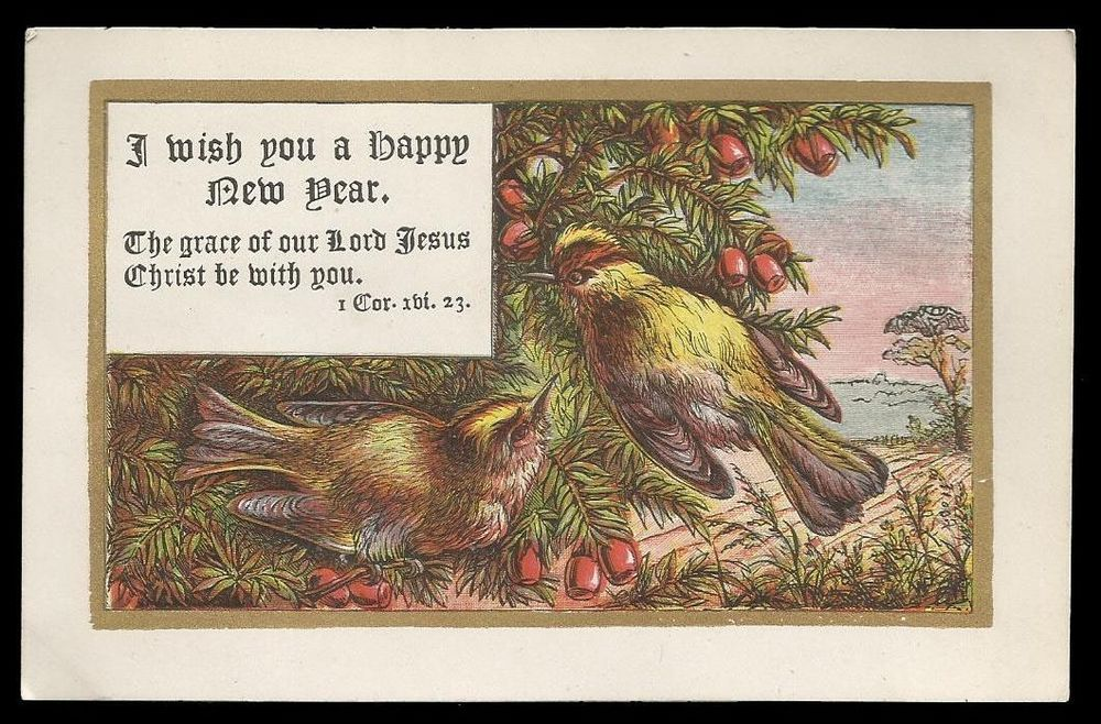 M29   VICTORIAN CHRISTMAS CARD   BIRDS   RELIGIOUS SCRIPTURE BIBLE QUOTE    1874