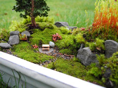 Miniature Moss Gardening Miniature Garden Moss Garden Fairy
