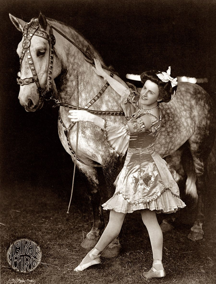 What a beautiful horse!  Circus gal #circus