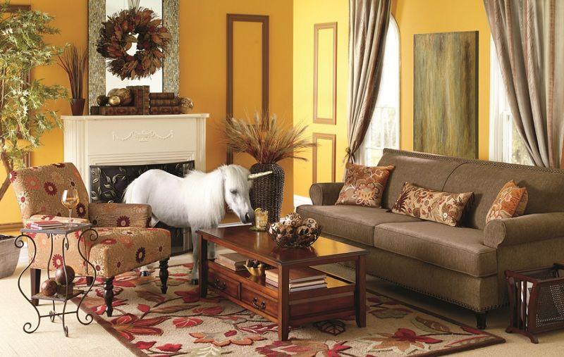 Furniture : Unique & Designer Furniture  Pier 8 Imports  Indoor