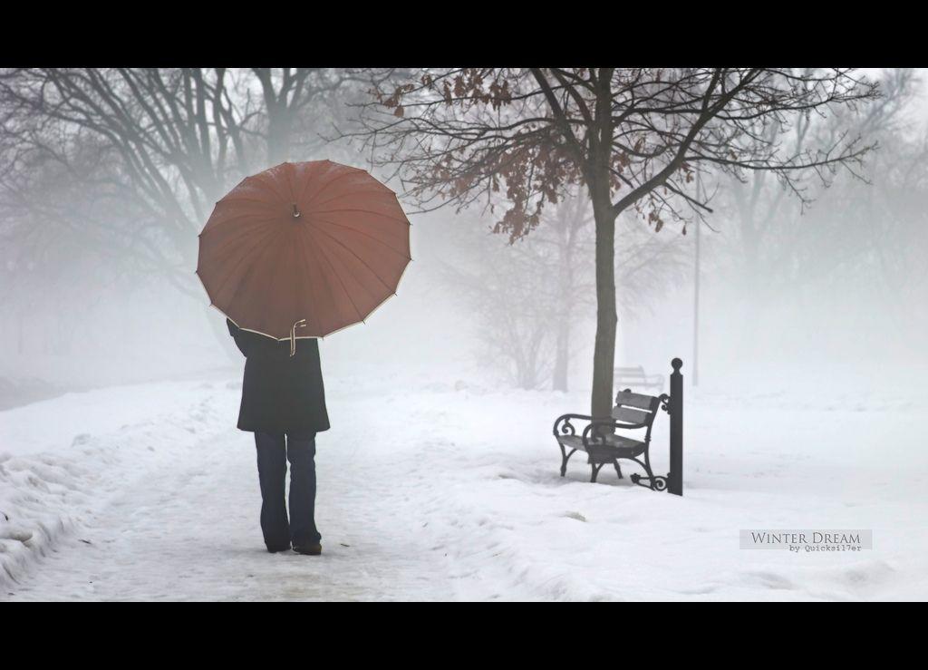 Winter Dream | by Quicksil7er