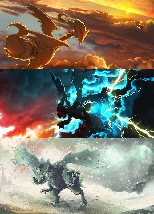 Unova dragons   Pokemon   Pokemon, Black pokemon, Pokemon