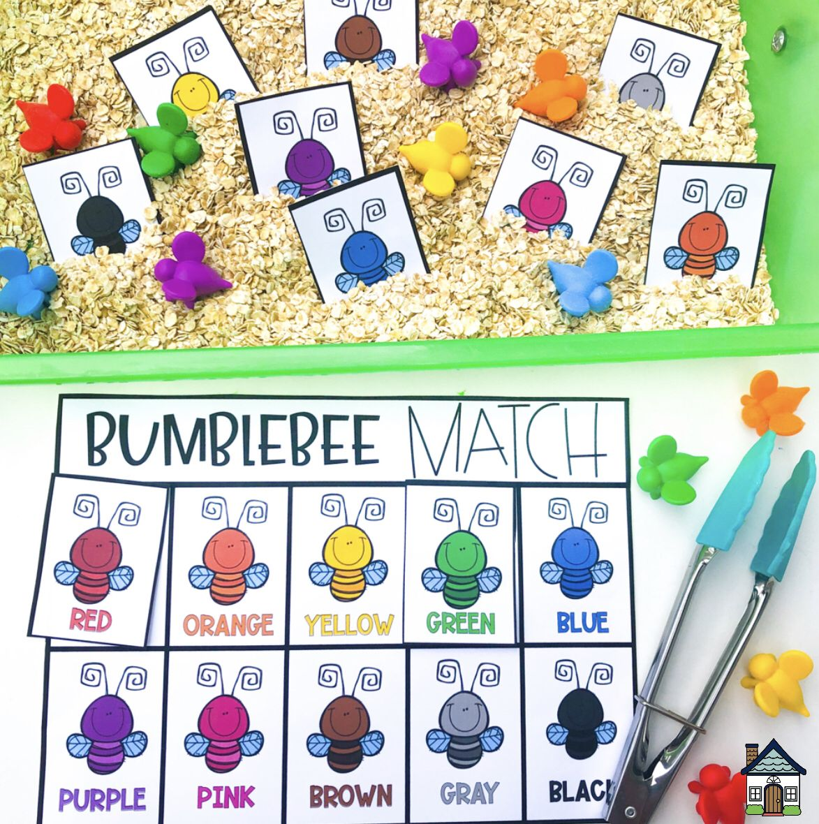 Insect Bug Color Sorting Sensory Bin Matching In