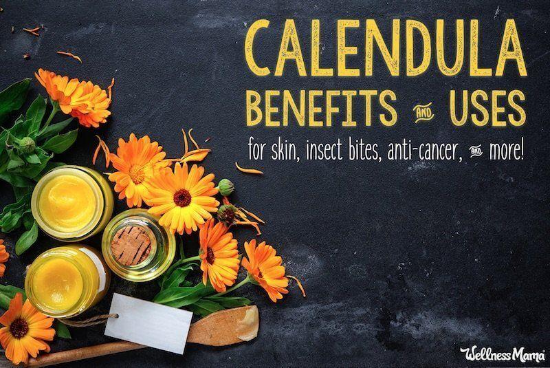 What Is Calendula? Benefits & Uses Calendula benefits