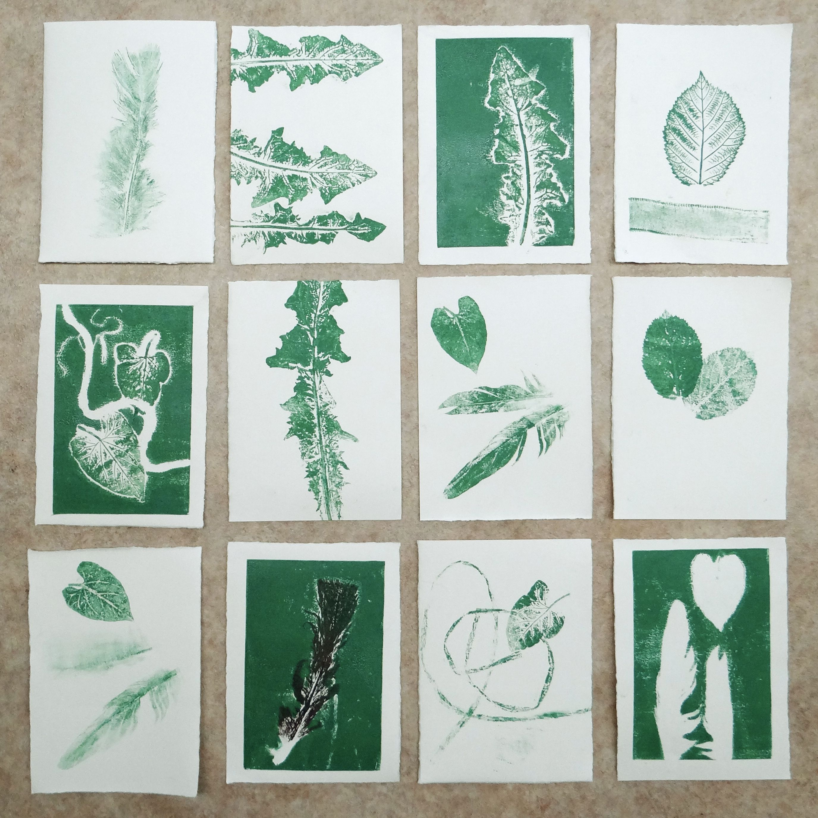 Using Leaves And Feathers For Mono Printing Creating