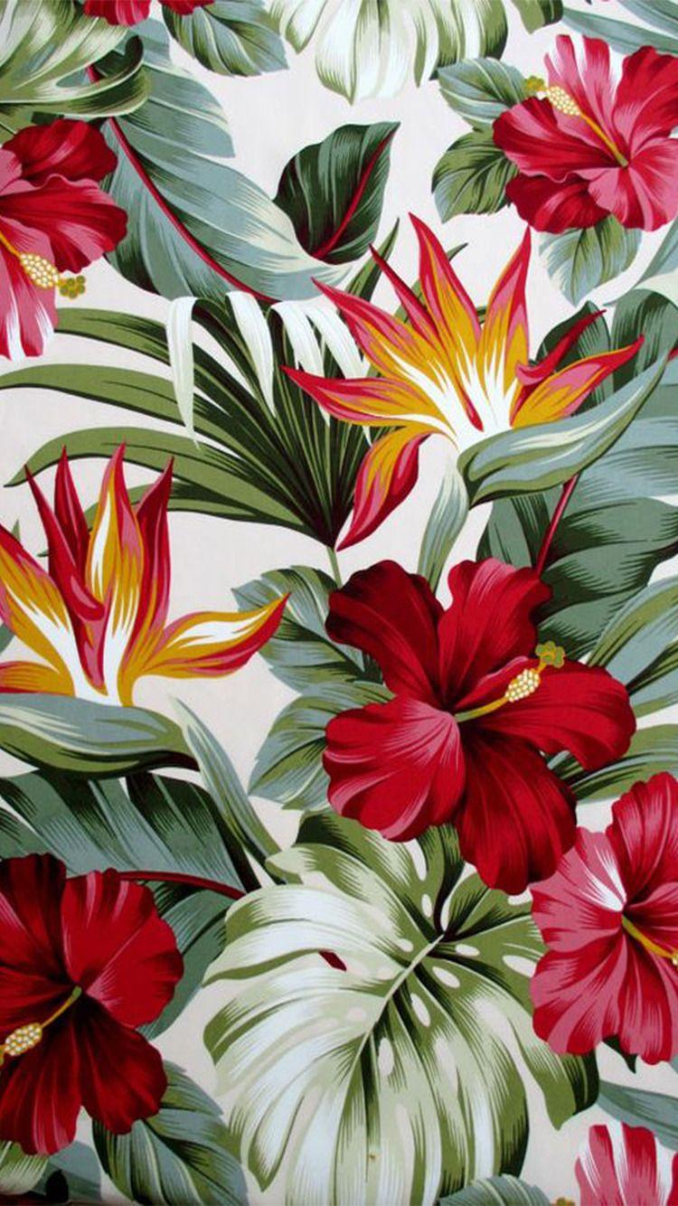 Iphone Wallpaper Tumblr Flower Wallpaper Birds Of Paradise Flower Flower Art Painting