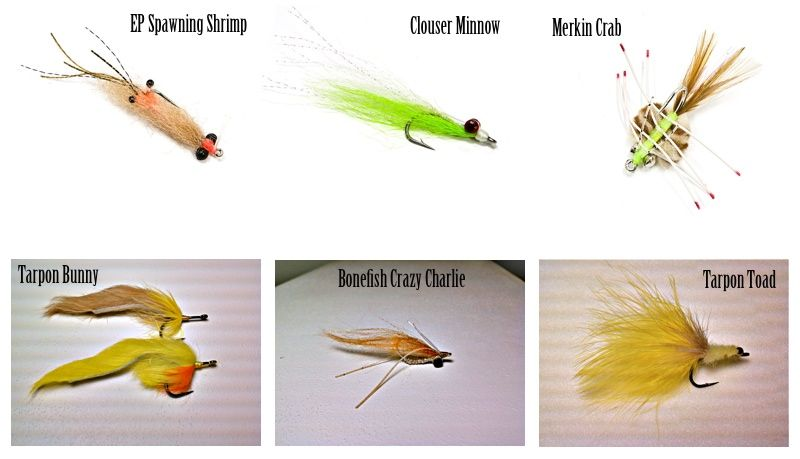 Spawning Shrimp Pearl Fly x 6 Fly Fishing Flies Bonefish Redfish Trout Snook